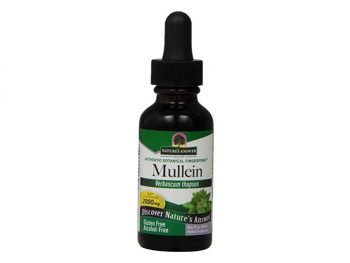 Natures' Answer Alcohol-Free Mullein Leaf