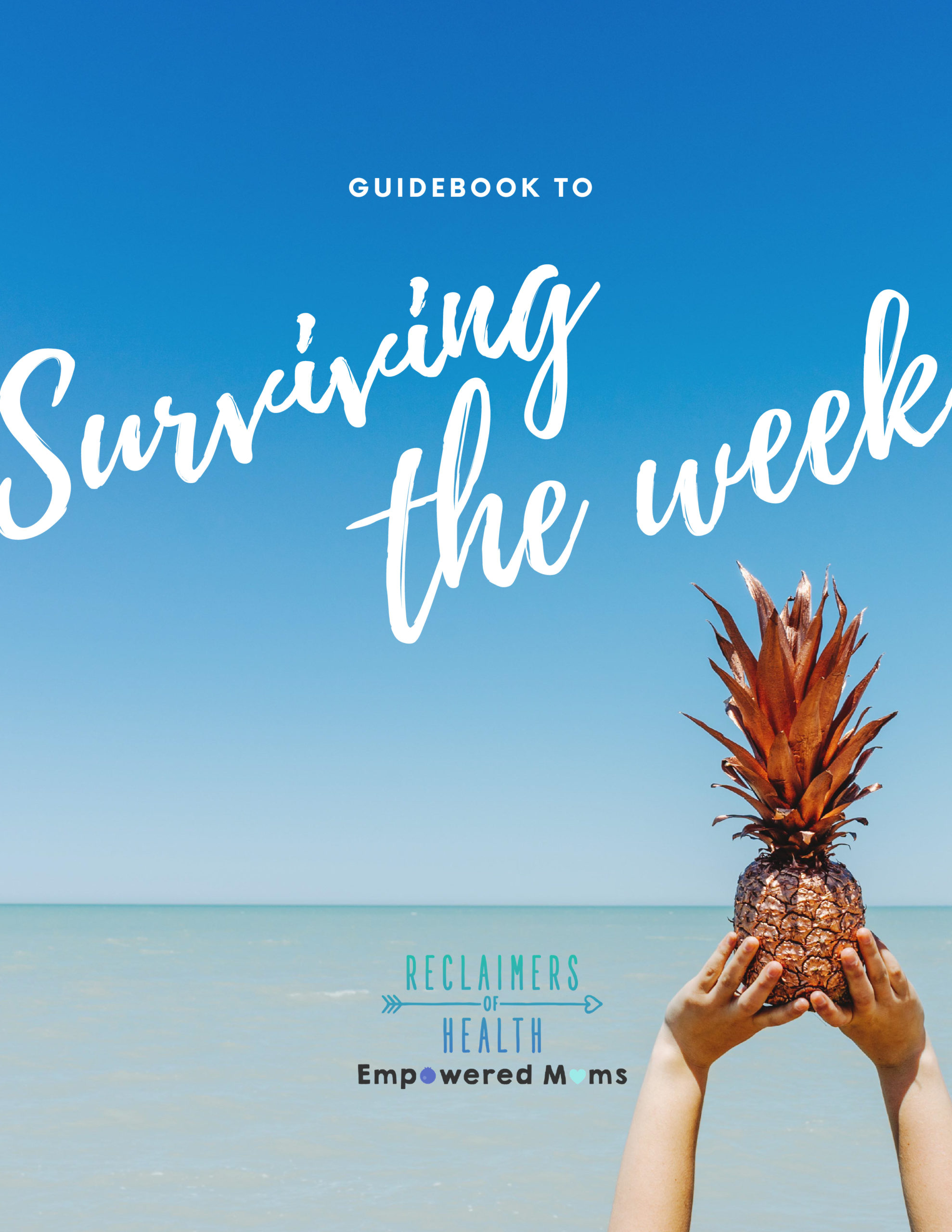 Guidebook to Surviving the Week cover