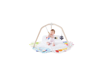 baby in play gym