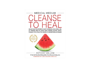 cleanse to heal book
